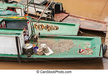 fishing boat with fish