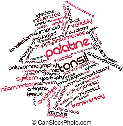 Word cloud for Palatine tonsil - Abstract word cloud for...