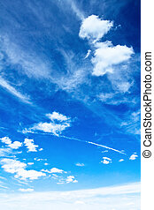 Sky and clouds. Summer vertical background