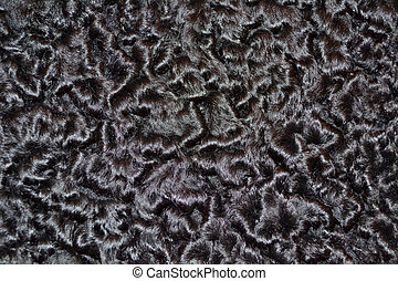 Closeup karakul fur texture to background