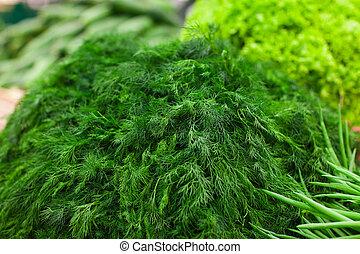 Heap of green fennel in supermarket - fresh green fennel in...
