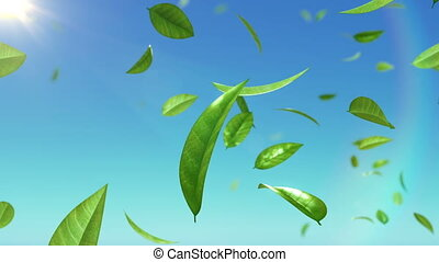 Beautiful Leaves flying in the sky with sun. HD 1080....