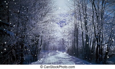 Snow Fall Forest - Snow in the forest, New Year...
