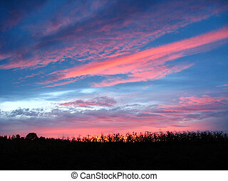 picturesque blue and scarlet clouds of sunset - The...