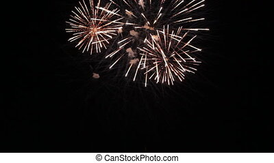 Fireworks on Independence Day - Festive fireworks igniting...