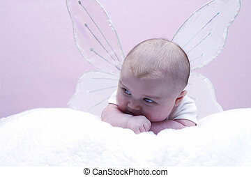 Angel Baby wWings - Baby with angelbutterflyfairy wings on...