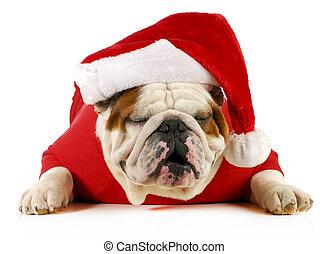 ho ho ho santa - english bulldog with jolly expression...