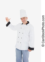 Chef showing something on white
