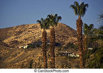 Hill Houses-Palm Springs