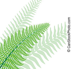Vector fern leaf with green silhouettes