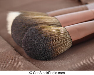 Two powder brushes for make-up
