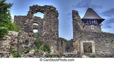 Ruins of Nevitskiy castle near Uzhgorod, Transcarpathian...