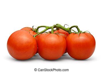 tomato over white background