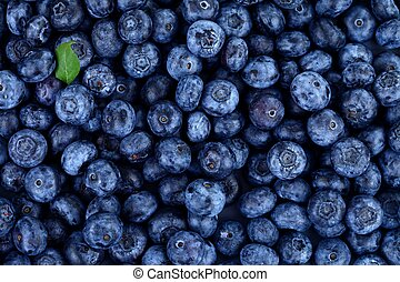Blueberries with little green leaf - Blueberries as...