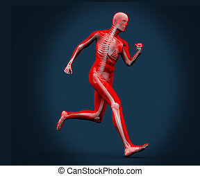 Digital body running on a blue background - Strong digital...