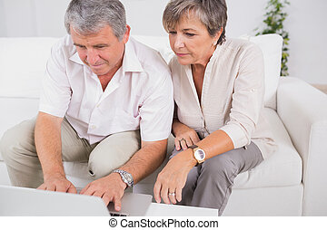 Old couple using a laptop in sitting room