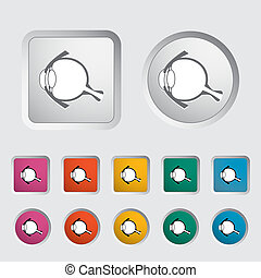 Anatomy eye - Anatomy eye icon Vector illustration
