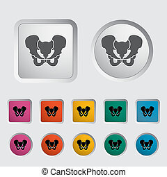 Pelvis - Anotomy Pelvis icon. Vector illustration.