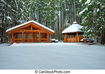 Wooden cottage in snowy forest