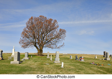 Rural cemetery in the palouse. - Large trees in the middle...