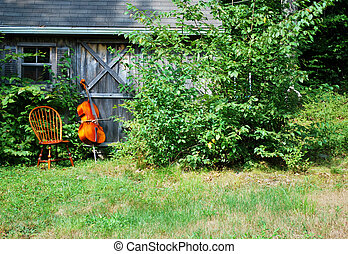 Cello. - Cello displayed outdoors.