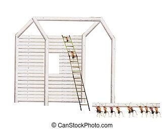 Ants build houses - Interesting ants build housing scene.