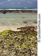 beach rock and stone cabin in republica dominicana - beach...
