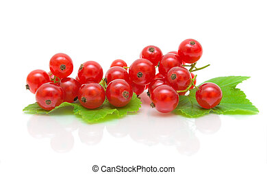 ripe red currants on a white background