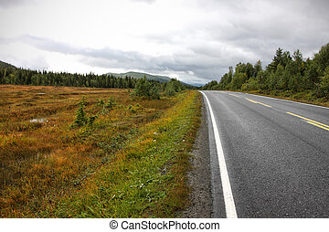 road   - road at the norwegian mountains