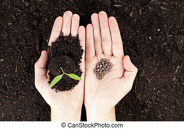 hands with plant and seeds - Open hands with newly sprout...