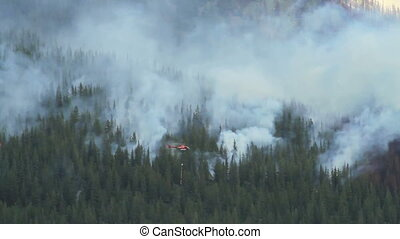 Helicopter and prescribed burn - Helicopters patrolling a...