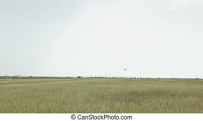 Landing of a small plane HD1080 - 25p