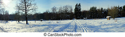 Panorama of a winter landscape - Trails through a winter...