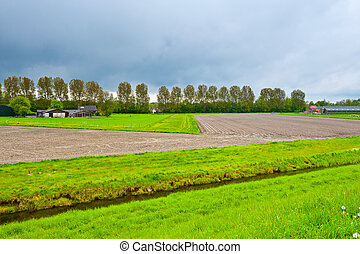 Farmstead on Land Reclaimed from the See, Netherlands