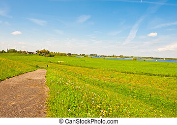 Floodplain - Village on Floodplain of the Rhine, Netherlands