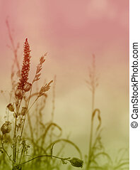 Grasses and Weeds - a decorative greeting card im Romantic...