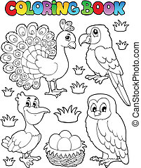 Coloring book bird image 4 - vector illustration