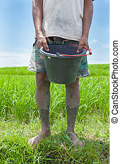 Rice farmer in Bali - BALI - FEBRUARY 15. Rice farmer using...