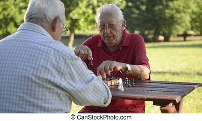 Two senior friends playing chess