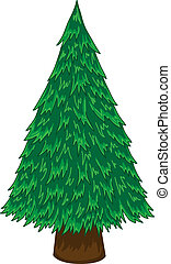 Pine tree vector - Cartoon pine tree on white background