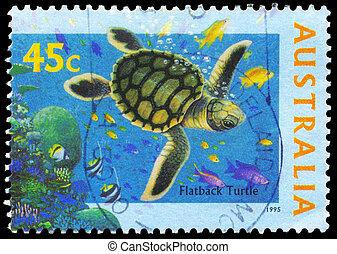 AUSTRALIA - CIRCA 1995 Flatback Turtle - AUSTRALIA - CIRCA...