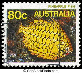 AUSTRALIA - CIRCA 1984 Pineapplefish - AUSTRALIA - CIRCA...