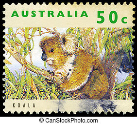 AUSTRALIA - CIRCA 1992 Koala - AUSTRALIA - CIRCA 1992: A...