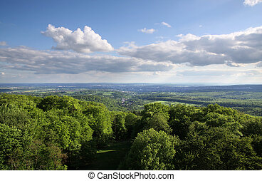 Views of the Taunus forest from the cellar head, Wiesbaden,...