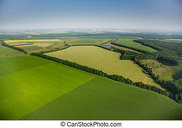 aerial view above the green fields