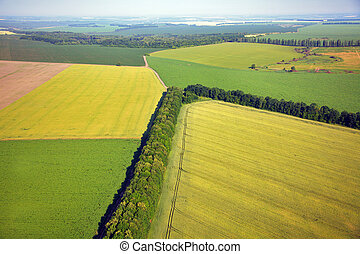 Aerial view of colza fields near the village