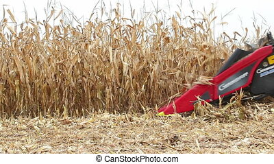 Harvest - Machine harvesting field of corn selective focus,...