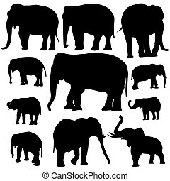 Elephant silhouettes on white background - Vector...
