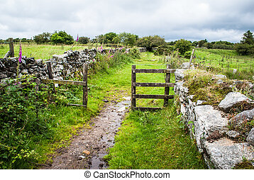 Footpath leading through a gate across Bodmin Moor, England,...