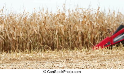 Harvest - Machine harvesting field of corn (selective focus,...